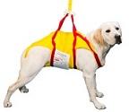 pet-sling